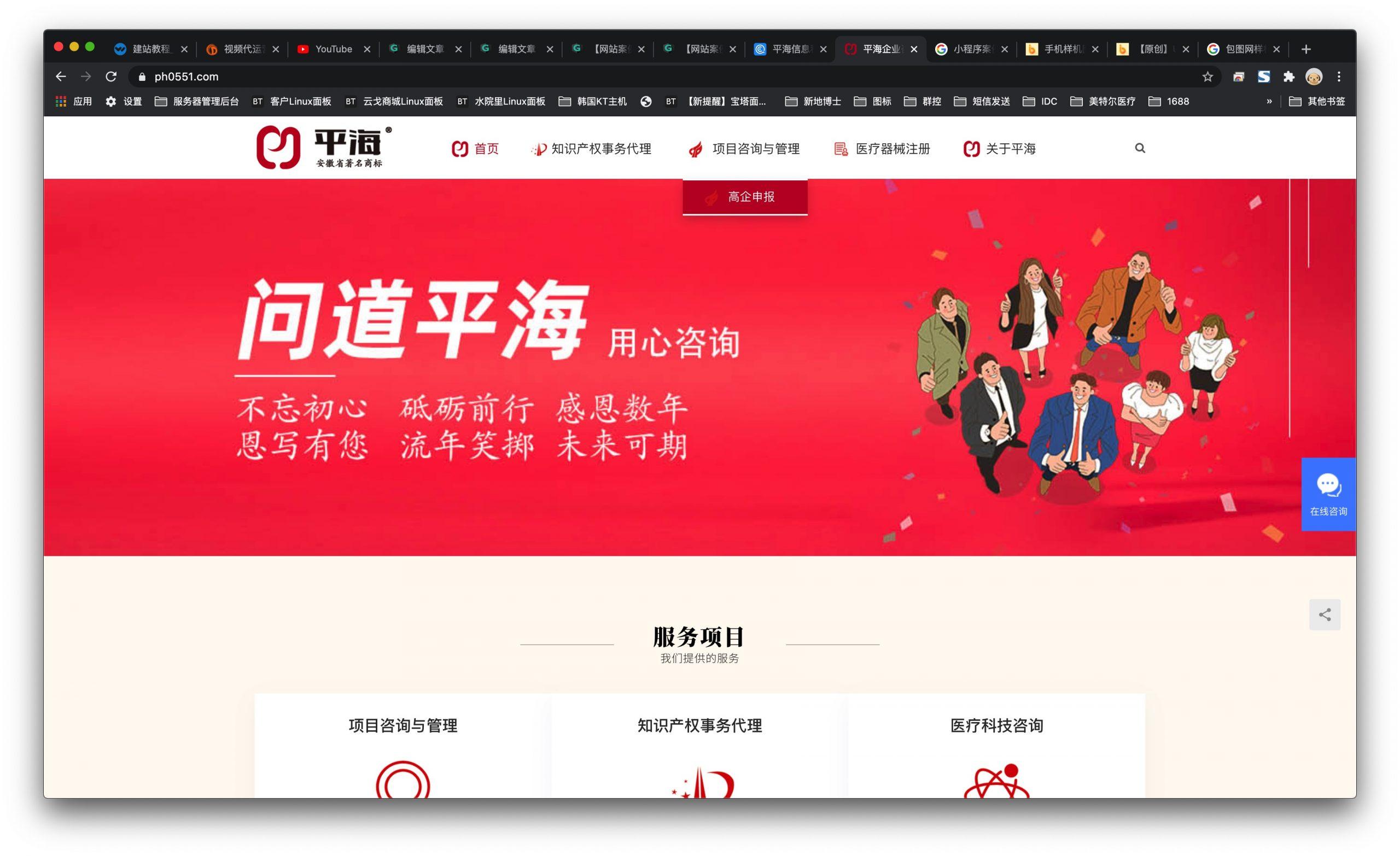 【网站案例】平海信息科技有限公司官网